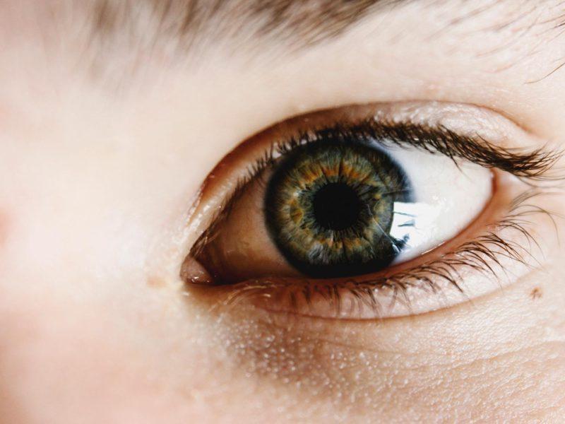terapia manual sistema oculomotor fisioterapia Bilbao